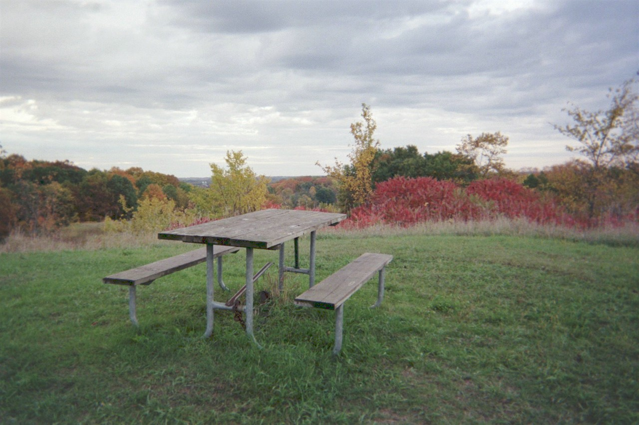 image of picnic table